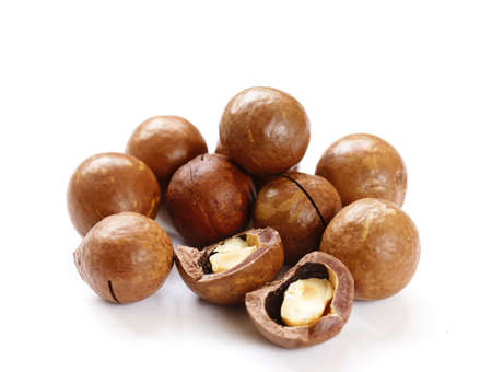 nutshells: natural macadamia nuts in shell