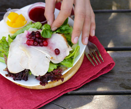salad with turkey and cranberry sauce Stock Photo