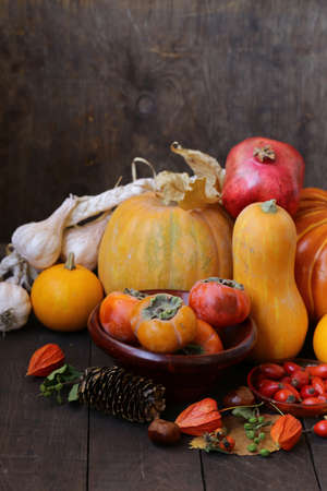 autumn still life with pumpkins and berries Banque d'images - 118460153