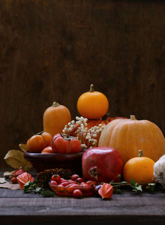 autumn still life with pumpkins and berries Banque d'images - 118460154