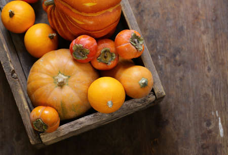 autumn still life with pumpkins and berries Banque d'images - 118460156