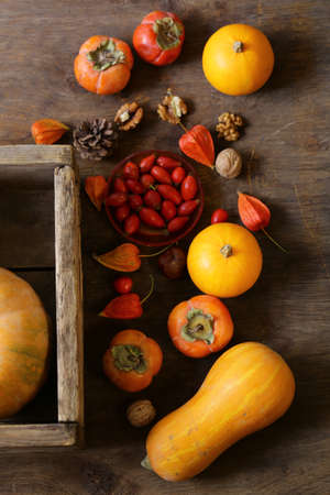 autumn still life with pumpkins and berries Banque d'images - 118460158