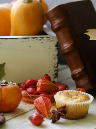 autumn still life with pumpkins and berries Banque d'images - 118460161