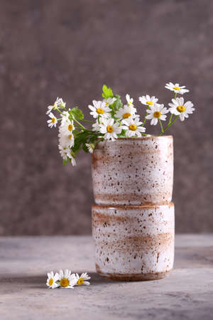 fresh natural organic daisies in a vase on the table