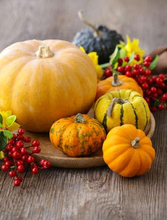 autumn still life with fresh pumpkins for decoration Banco de Imagens