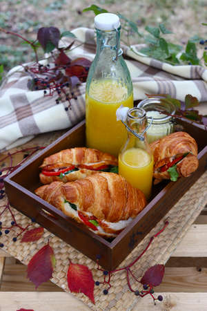 picnic with croissant sandwich and orange juice