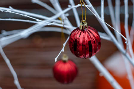 Red Christmas balls on white branches