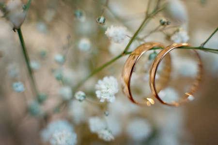 Wedding wedding rings, close-up Standard-Bild - 129351492