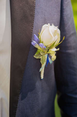 Grooms buttonhole rose pinned up on a suit Standard-Bild - 129351512