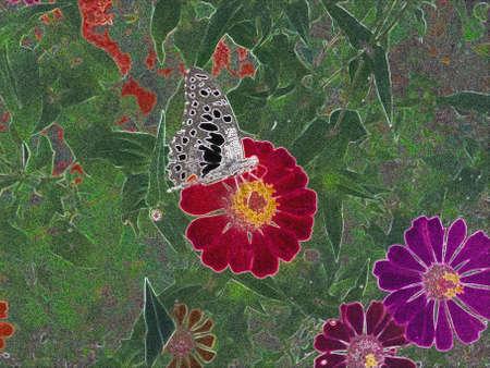 luminosity: Butterfly on Cosmos Flower style Luminosity  Stock Photo