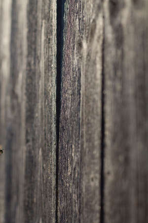 Old Worn Out Wooden Boards Forming The Wall Of A Cabin In The Fields, Shot On A Grassland Фото со стока