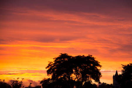 Beautiful Sunset Afterglow with silhouettes of three big broadleaf trees in the foreground and a gradient from purple to red and orange in the sky with clouds