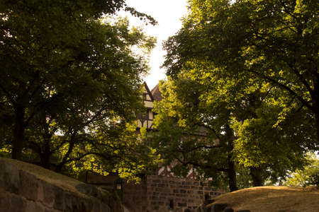 Green trees and branches in nuremberg near the castle with the old mediaval wall