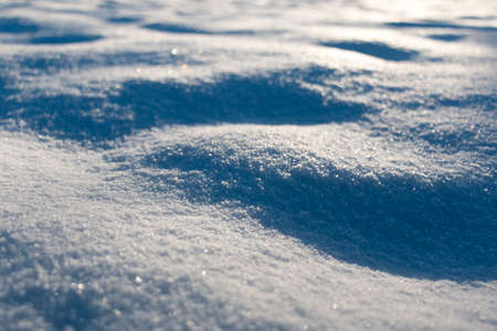 macro of sparkling snow in golden evening sun with shallow depth of field Stock Photo
