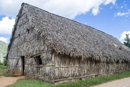 Cigar factory Cuba. Hut made of palm leaves. Manual production of Cuban cigars. Cultivation of Tobacco in Vinales.