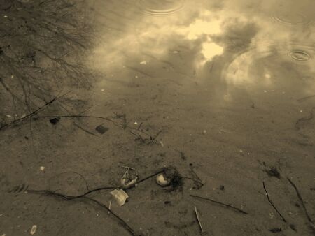 interweaving: Underwater Stock Photo
