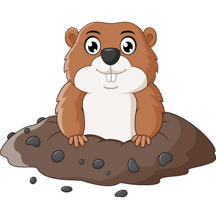 groundhog: Cartoon funny groundhog