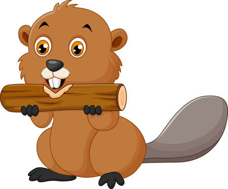 hairy legs: illustration of Illustration of a beaver on a white background