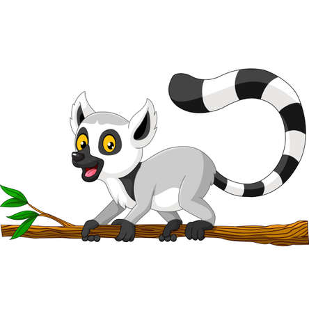 illustration of Young raccoon on branch