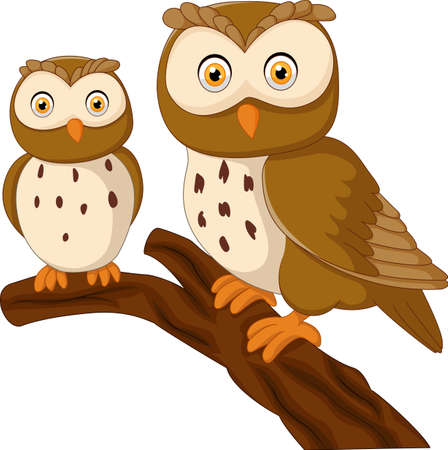 illustration of Cute owl couple cartoon