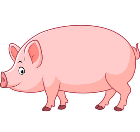 stocky: illustration of Cartoon happy pig Illustration