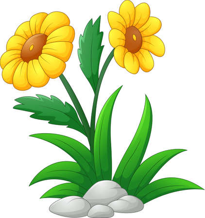 Sun flower: Sun Flower Cartoon