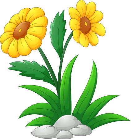 sun flower: Sun Flower cartoon Illustration