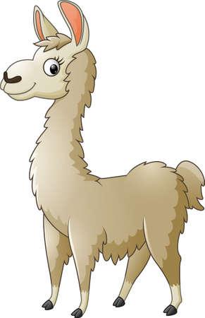 llama: Llama cartoon