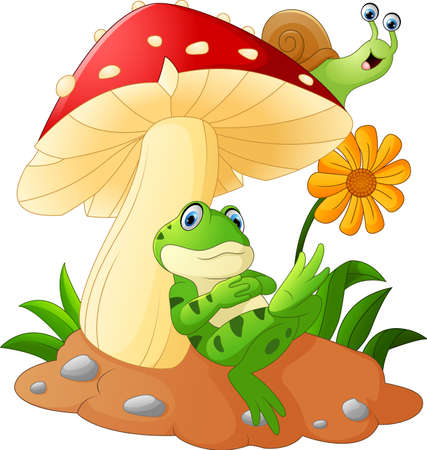 Cute frog and snail cartoon with mushrooms