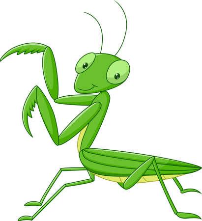 illustration of Cute cartoon mantis