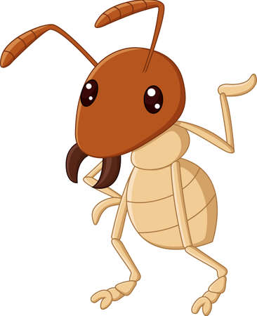 termite: illustration of Cartoon funny termite presenting Illustration
