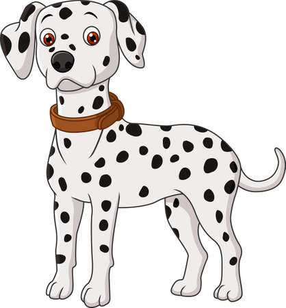 vector illustration of Dalmatian cartoon