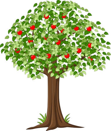 fres: Green Apple tree full of red apples isolated