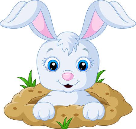 Grappig konijn cartoon Vector Illustratie