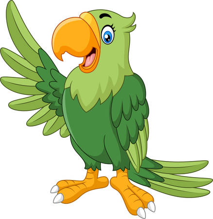funny: Cartoon funny parrot presenting
