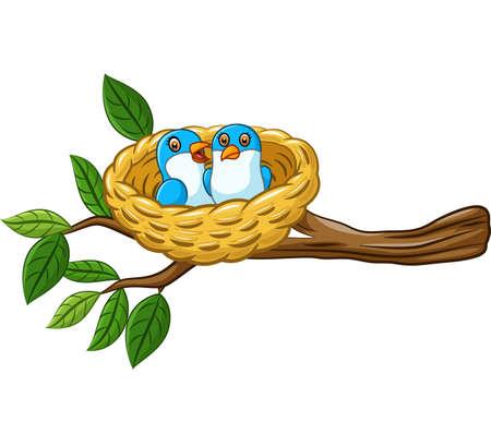 Oiseau dans le nid isolé sur fond blanc