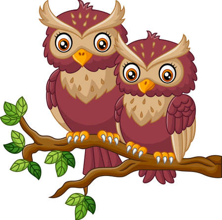owl illustration: Cute owl on the branch
