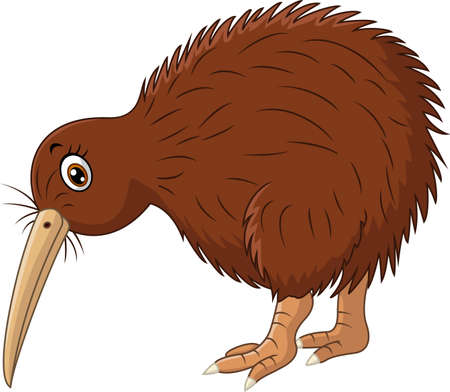 Cute kiwi bird cartoon