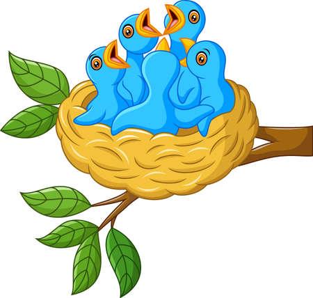 Oiseau dans le nid