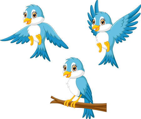 Blue bird cartoon