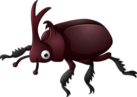horn beetle: Beetle with sharp horn