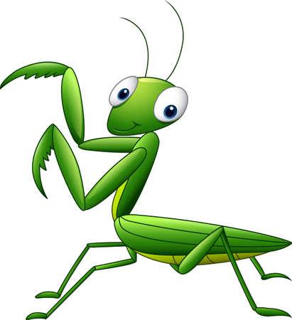 Cute cartoon mantis