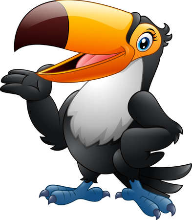 toucan: Cartoon funny toucan presenting Illustration