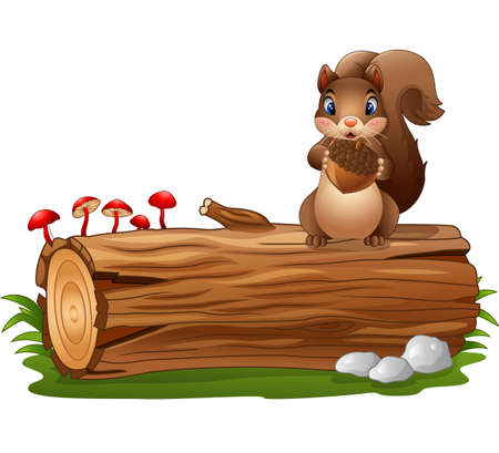 Cartoon squirrel standing while holding acorn