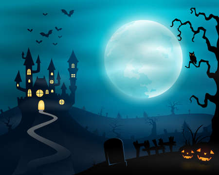 dry flies: Halloween night background with castle and pumpkins