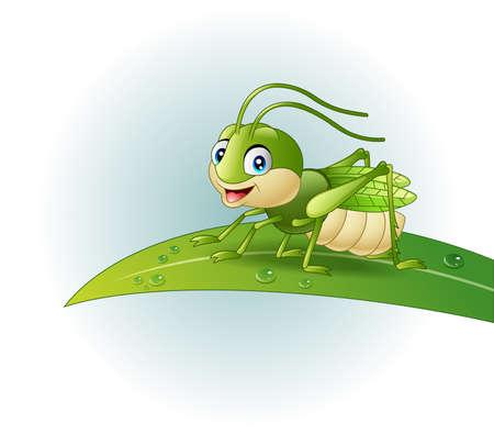 vector illustration of Cartoon grasshopper on leaf