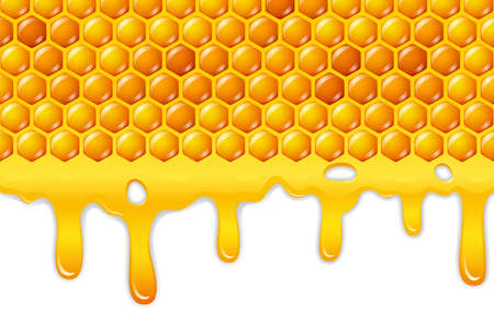 trickle: vector illustration of Cartoon honeycomb with honey dripping