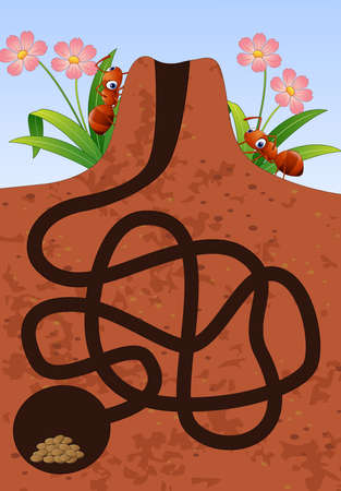 Vector illustration of Maze game: Help the ants to find home under the ground