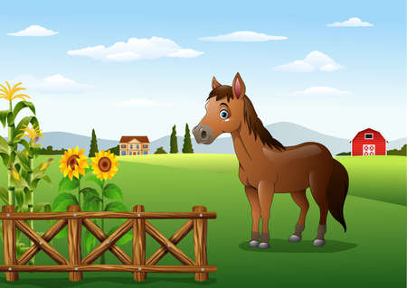 Vector illustration of Cartoon brown horse in the farm