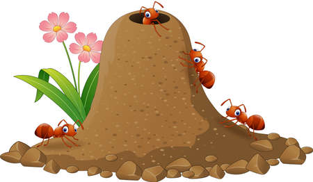 Vector illustration of Cartoon ants colony and ant hill Vectores
